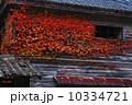 晩秋 もみじ 秋の写真 10334721