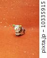 年賀素材 未年 年賀状素材の写真 10335915