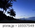 カウアイ島ワイメアのビーチ 10337549