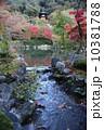 庭園 10381788