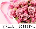バラ、プレゼント 10386541