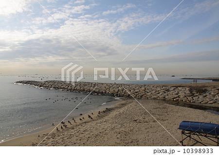 明石海峡/林崎松江海岸とたくさんの海苔の養殖作業場のある播磨灘の漁業風景 10398933
