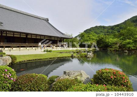 世界遺産 天竜寺 10443910