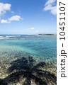 アラモアナビーチパーク 海岸 湾岸の写真 10451107