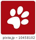 Dog footprint 10458102