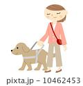 視覚障害者と盲導犬 10462453