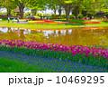 公園の景色 10469295