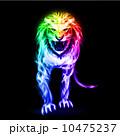 動物 アグレッシブ ライオンのイラスト 10475237