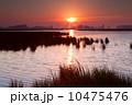 太陽 日 日光の写真 10475476