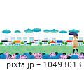 雨の日 街 女性 紫陽花 10493013