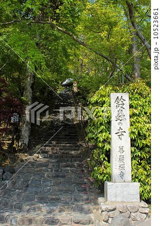 京都 鈴虫寺 参道の石段 10523661