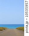 きれいな海に続く道路 10535957