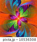 フローラル アート 抽象的のイラスト 10536308