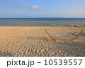 ハンモック 海水浴場 夕日の写真 10539557
