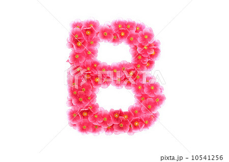 Pink violets letter Bのイラスト素材 [10541256] - PIXTA