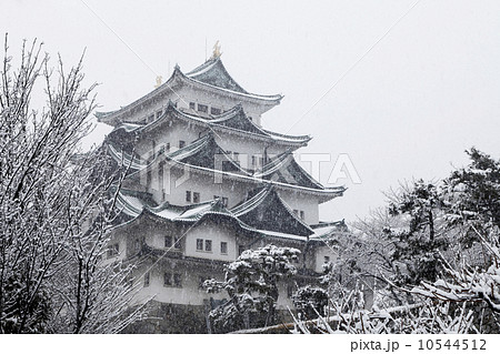 2月冬 雪の名古屋城 愛知の冬景色 10544512