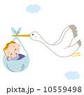 乳児 こうのとり ベクターのイラスト 10559498