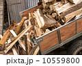 林業 材木 森林の写真 10559800