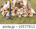 切り株 木目 伐採の写真 10577612