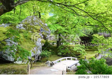 京都 宝厳院 獅子岩 10577869