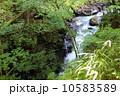 雄飛の滝 スッカン沢 渓流の写真 10583589
