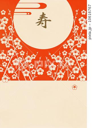 白梅寿B(文字なし) 10616767