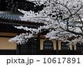 南禅寺の春 10617891