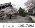 南禅寺の春 10617898