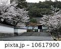 南禅寺の春 10617900