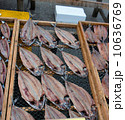 干し魚 一夜干し 開き干しの写真 10636769