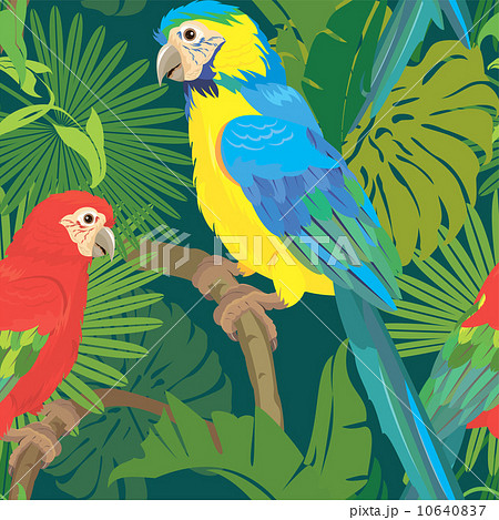 seamless pattern with palm trees leaves and blue yellow and redの