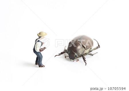 Miniature people with bugの写真素材 [10705594] - PIXTA