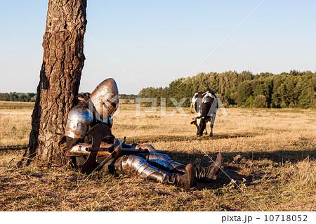Medieval knight 10718052