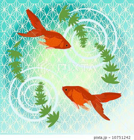 金魚の模様 10751242