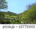 池 新緑 森林の写真 10770402