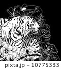 Tropical Exotic Floral Background with Tiger 10775333