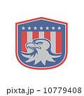 Metallic American Bald Eagle Head Flag Shield Retro 10779408