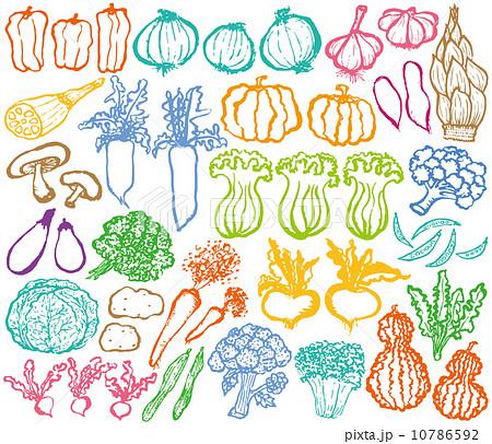 野菜 マルシェ 手描きイラストのイラスト素材 10786592 Pixta