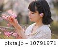 桜を愛でる若い女性 10791971