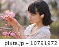桜を愛でる若い女性 10791972