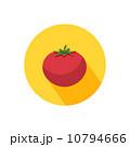 トマト ベジタブル 野菜のイラスト 10794666