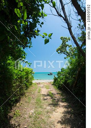 沖縄の海 久手堅海岸 10809592