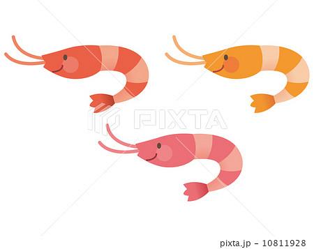 えび 海の仲間のイラスト素材