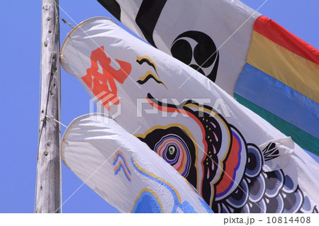 ひたち海浜公園 10814408