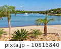 Beautiful scenery of the lake with fountains, a beach and palm t 10816840