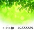 エコイメージ素材 10822289