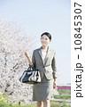 桜とビジネスウーマン 10845307