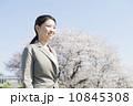桜とビジネスウーマン 10845308
