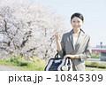 桜とビジネスウーマン 10845309