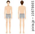 男性 美容 裸 ヌード 全身 10878665